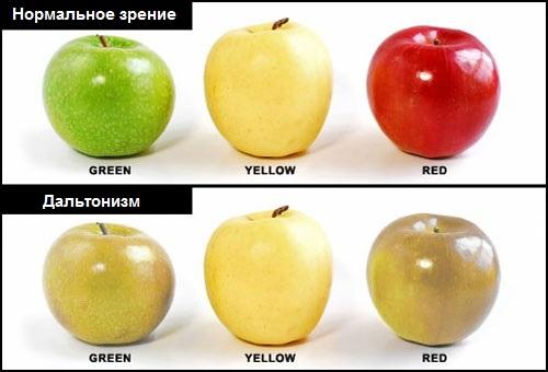 как видят дальтоники цвета фото