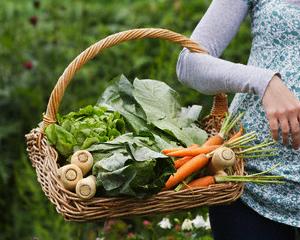 Статьи о натуральных продуктах