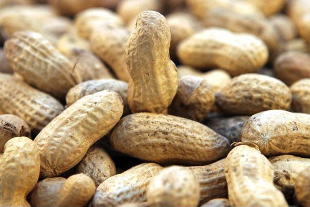 57 тонн индийского арахиса было упаковано неправильно